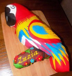 Tort papuga nr 2